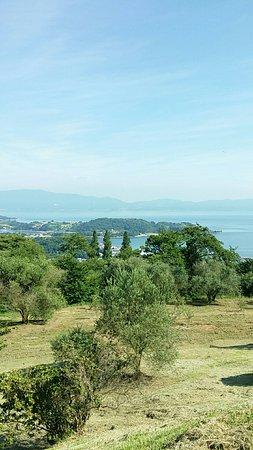 Setouchi, Giappone: オリーブ園から瀬戸内海を望む