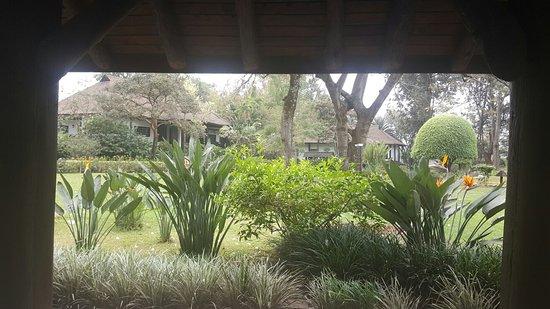 Safari Park Hotel: ٢٠١٦٠٨٢٠_٠٩٢٨٢٥_large.jpg