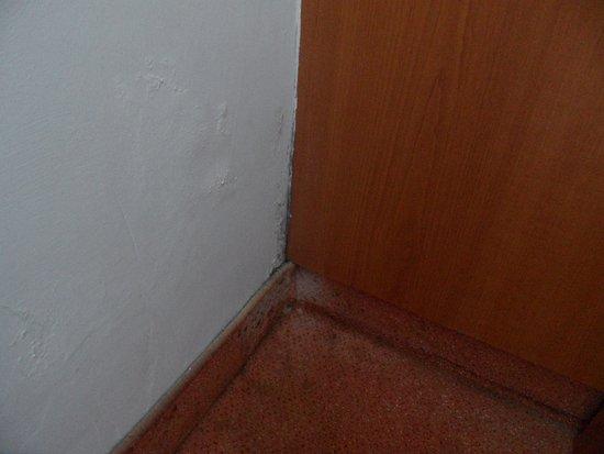 Tisa, Repubblica Ceca: plíseň (pavouk s pavučinou již odstraněn)
