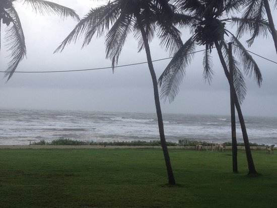 Ashvem Beach, India: Nice View from the beautiful Lawns