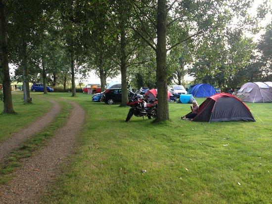 Reedham, UK: The Campsite.