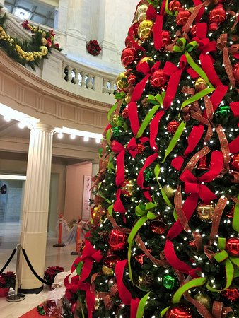 Arkansas State Capitol: A most beautiful tree............