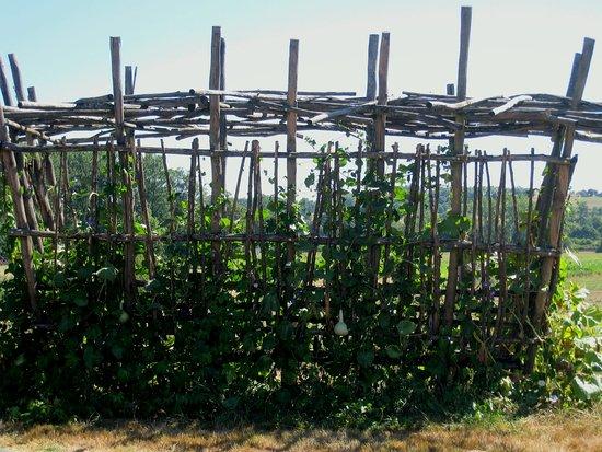 Varetz, Frankrike: jardin