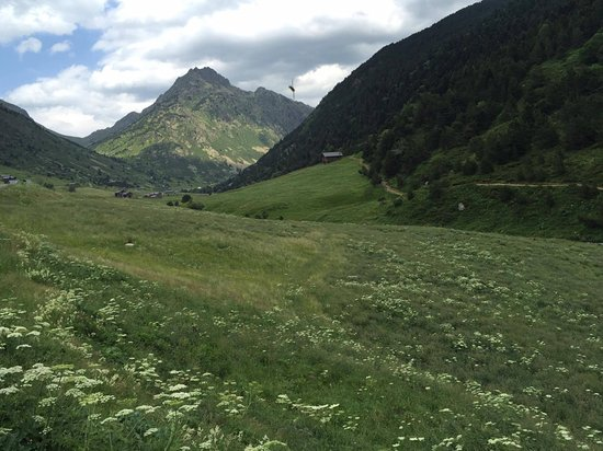 Incles, Andorra: View along the trail with beautiful wild flowers