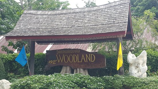 The Woodlands, Teksas: This is the perfect place to visit and stay and no about wood art