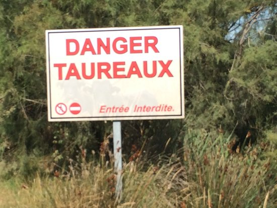 Provence, Frankrijk: photo2.jpg