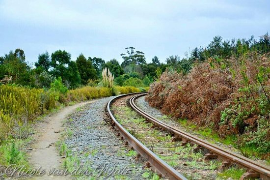 George, Sydafrika: Garden Route Botanical Gardens