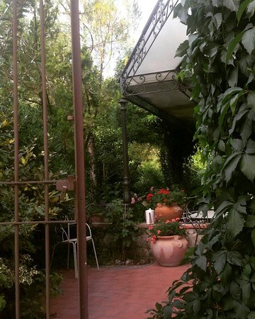Vaglia, Italia: Il Giardino Esterno dove abbiamo mangiato !