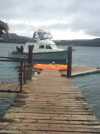 WhaleSwim Adventures: photo2.jpg