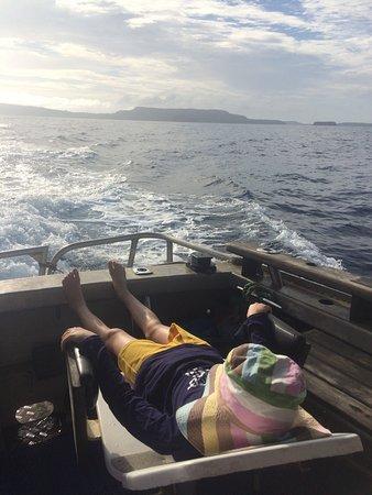 WhaleSwim Adventures: photo3.jpg
