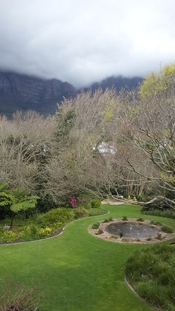 Vineyard Hotel: View of the garden from our room