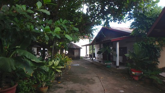 Thalat-bild