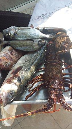 Boukari, Greece: выбирайте свежевыловленную рыбу!