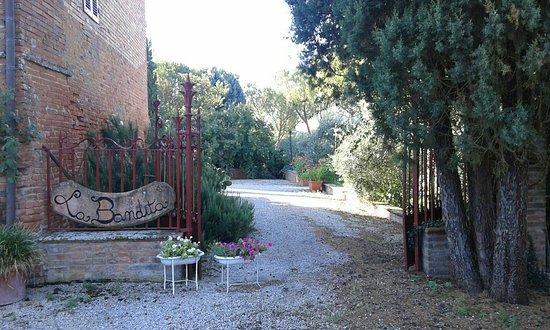 Bettolle, Italië: -
