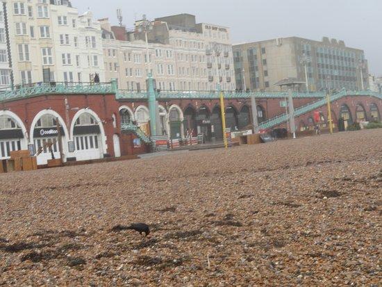 Brighton Beach: camminando sulla spiaggia di ghiaia