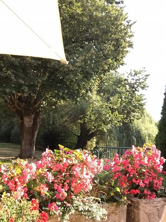 Moulin De Vigonac: Moment délicieux face au parc