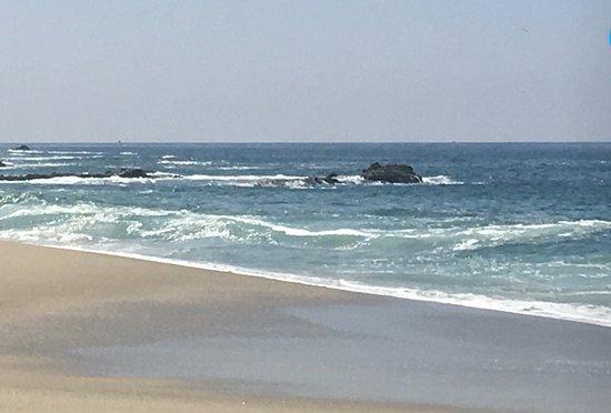 Table Rock Beach Laguna Beach Ca Top Tips Before You
