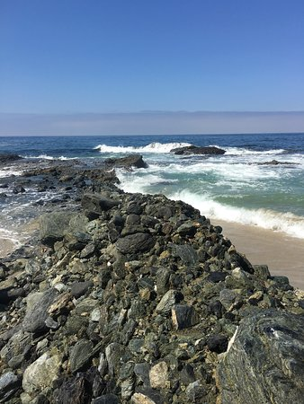 Table Rock Beach: photo3.jpg
