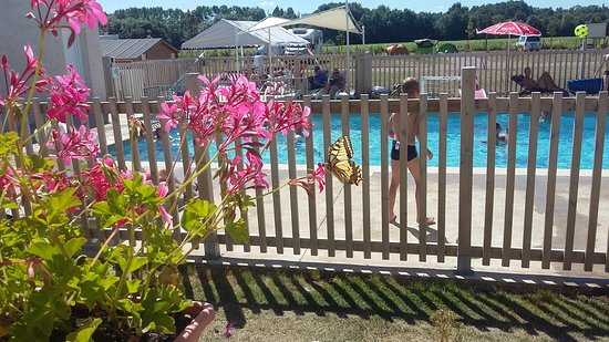Camping loire et chateaux updated 2017 campground for Camping indre et loire avec piscine