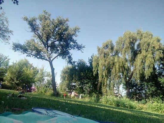 Mogosoaia, Rumania: TA_IMG_20160820_164552_large.jpg