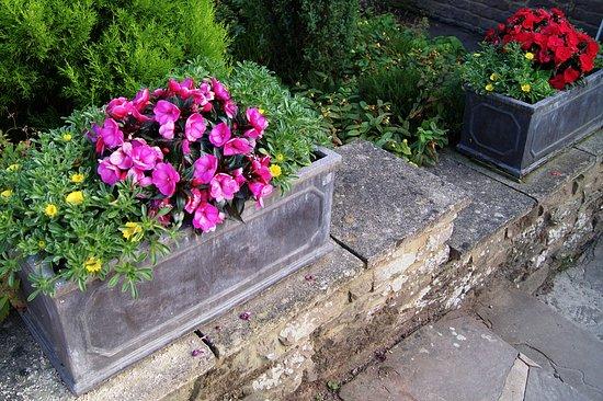 Much Birch, UK: well kept gardens