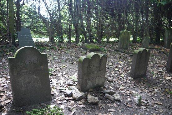 Wilton, UK: Der Tierfriedhof mit zum Teil alten Grabsteinen