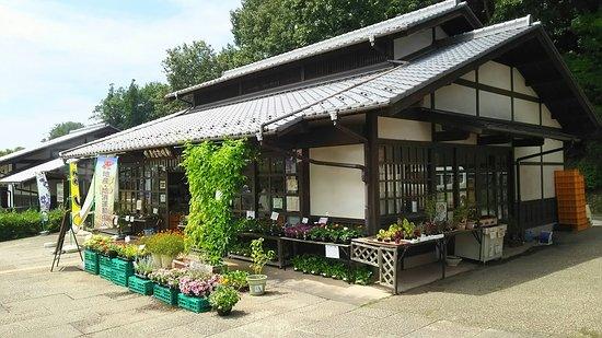 Minokamo, Japan: DSC_1072_large.jpg