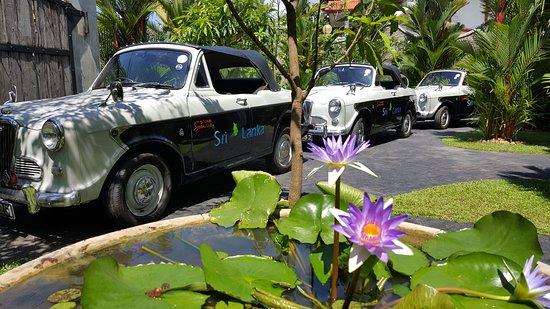 Ridee Villa: Cars