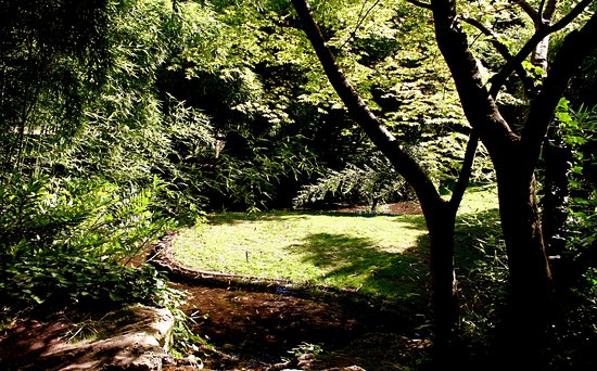 Jardin d 39 horticulture pierre schneiter reims aktuelle for Jardin 63