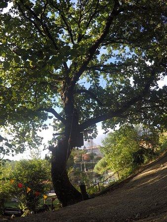 Morlupo, Ιταλία: Fine percorso Verde