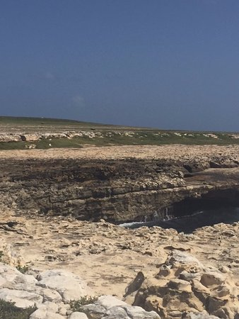 Antigua V.I.P. Tours: Devil's Bridge where slaves would jump into the very rough ocean and commit suicide.