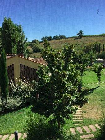 Montespertoli, İtalya: Vista dall'alloggio