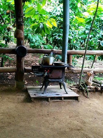 Rainforest Chocolate Tour: Cookstove for the demo