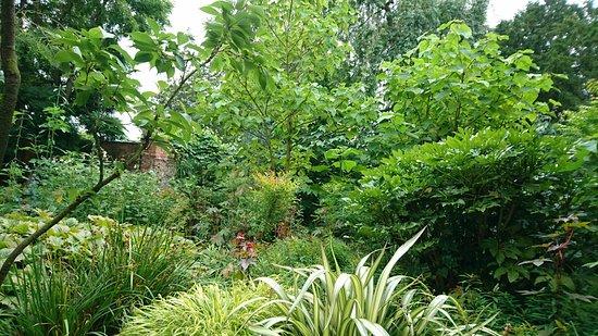 Ripon, UK: DSC_0771_large.jpg