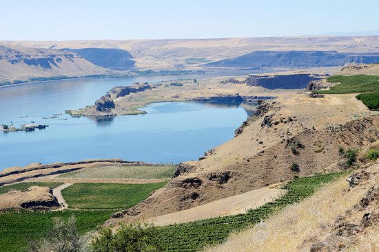 Goldendale, WA: View of Columbia River from Maryhill Winery