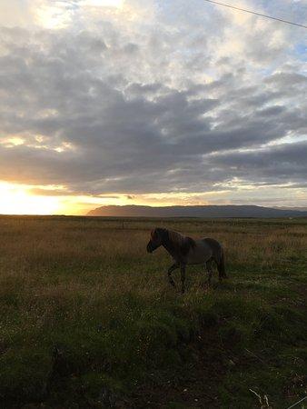 Borgarnes, Islanda: Coucher de soleil 23h :)