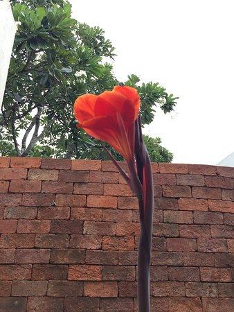 Putahracsa Hua Hin Photo