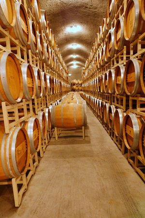 Benton City, WA: In the cellar at Terra Blanca Estate Winery & Vineyard