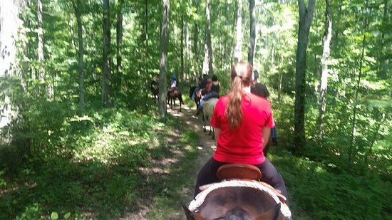 Schooner Valley Stables: On the trail