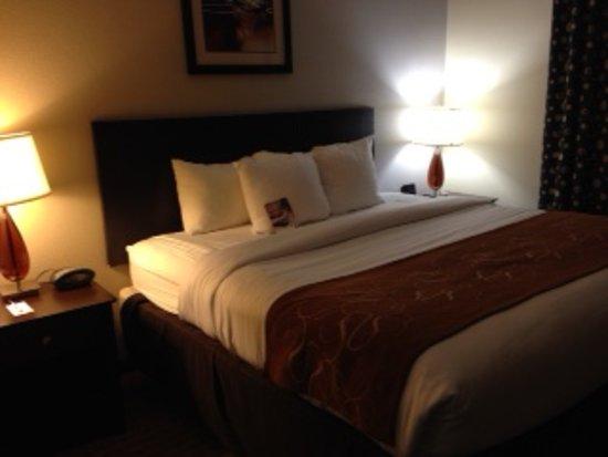Wilson, Karolina Północna: Very comfy bed