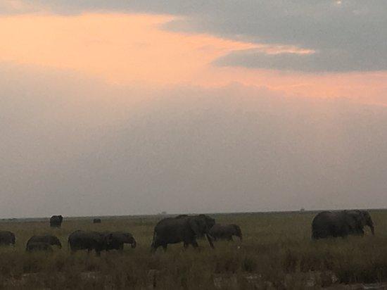 Amboseli Sopa Lodge Image