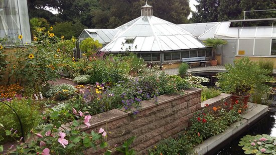 Botanischer Garten Picture Of Botanischer Garten Halle Saale Tripadvisor