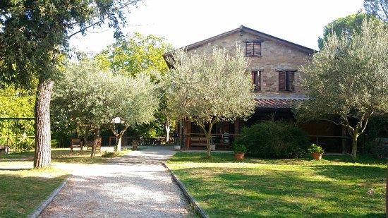 Piccione, Италия: P_20160820_094200_large.jpg