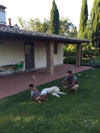 Montespertoli, Italia: Agriturismo Montalbino
