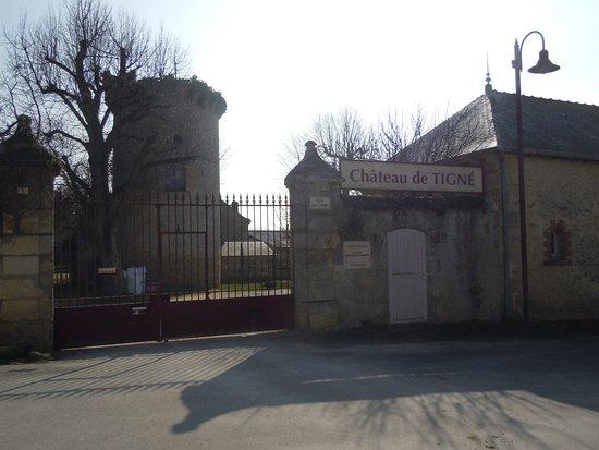 Château de Tigné Vins Gérard Depardieu