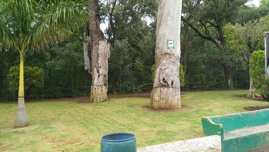 Parque Zoologico Benito Juarez