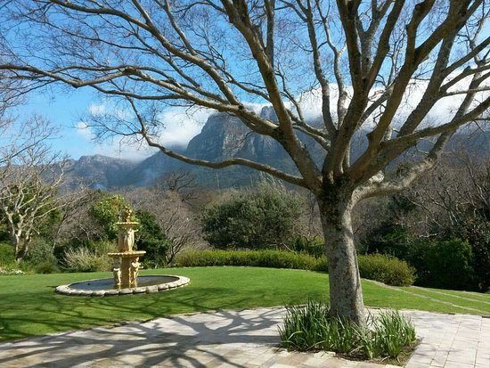 Vineyard Hotel: received_626583474168681_large.jpg