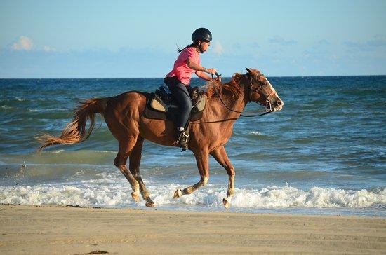 Frisco, Caroline du Nord : Enjoying a run on the beach with (horse) Shasta