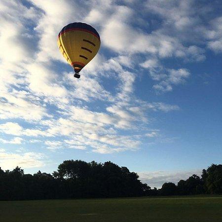 Wizard Balloons: IMG_20160814_101833_large.jpg