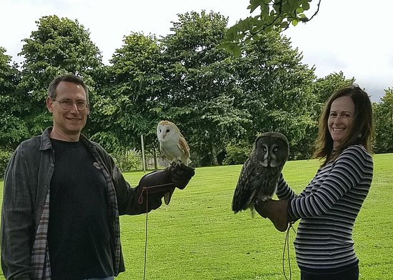Sheen Falls Lodge: Falconry - Working with owls